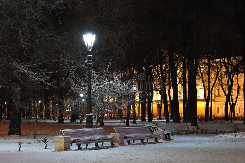 Lantaarn en snow-covered takken van bomen stock foto's