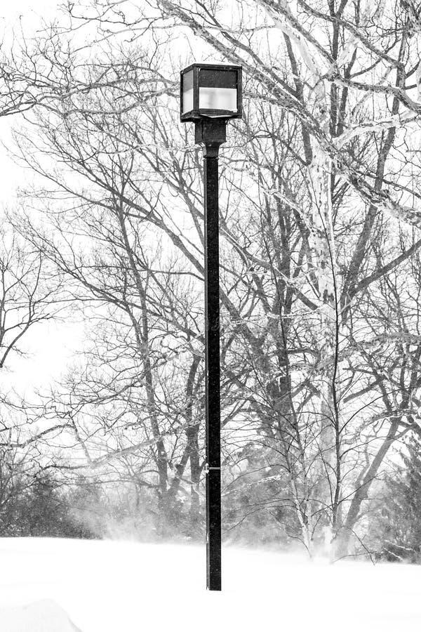 Lantaarnpaal onder sneeuw stock afbeelding