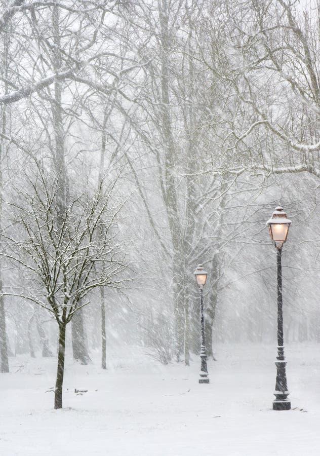 Lantaarnpalen in de sneeuw royalty-vrije stock foto