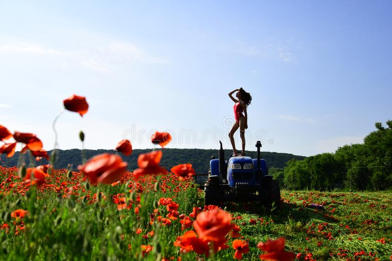 lantbruk ny teknik, jordbruk, sommar fotografering för bildbyråer