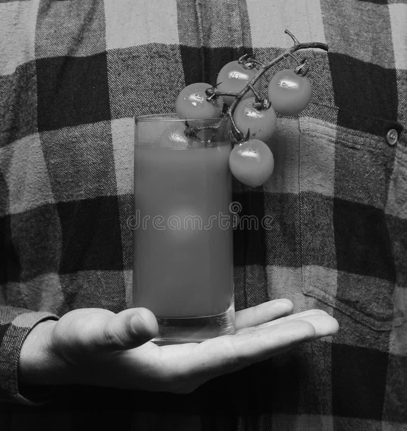Lantbruk- och höstbegrepp Handen för den självodlade skörden för grabbhåll rymmer den manliga tomatfruktsaft på röd bakgrund för  arkivfoto