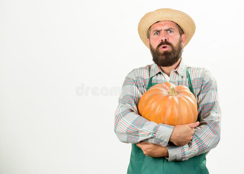 Lantbruk och jordbruk Åkerbrukt frö gödningsmedel och skördmannen uppsökte lantligt framlägga för bondekläderförkläde arkivfoton