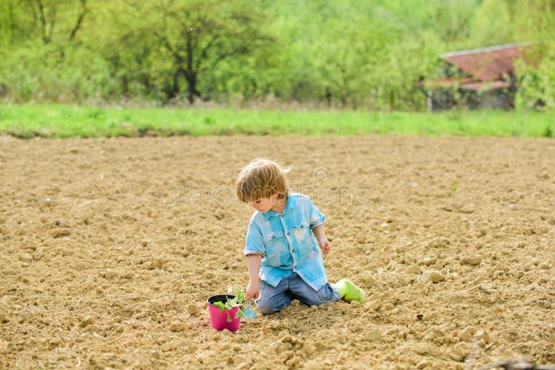 Lantbruk och jordbruk brown r?knad dagjord som milj?l?vverk g?r den g?ende gr?na treen f?r text f?r slogan f?r ordst?v f?r kramna arkivbild