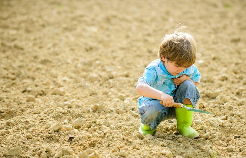 Lantbruk och jordbruk Ekologi och milj?skydd brown r?knad dagjord som milj?l?vverk g?r den g?ende gr?na treen f?r text f?r slogan royaltyfria foton