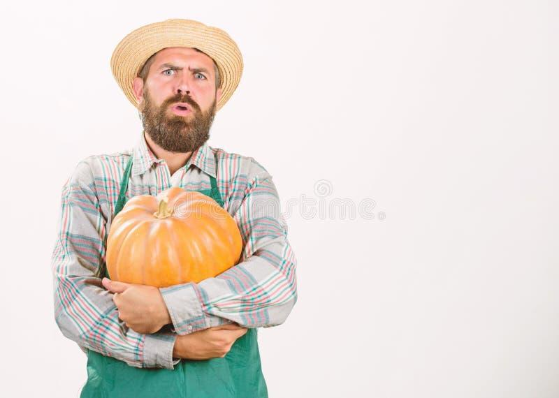 Lantbruk och jordbruk ?kerbrukt fr? g?dningsmedel och sk?rdmannen upps?kte lantligt framl?gga f?r bondekl?derf?rkl?de arkivbilder