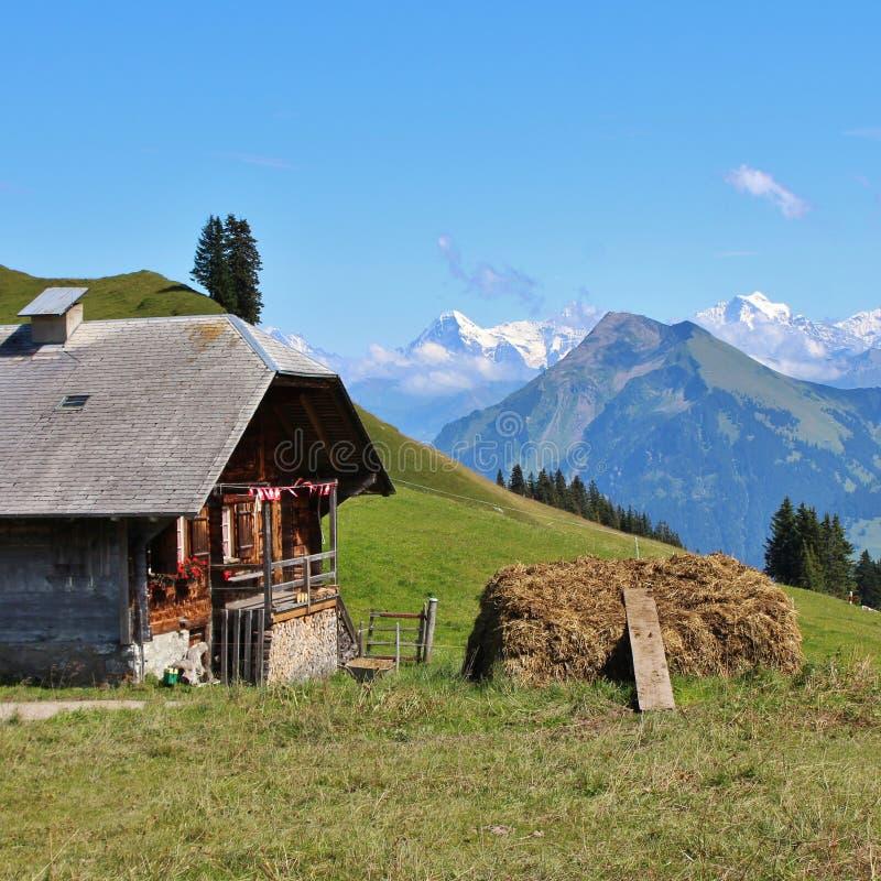 Lantbrukarhem och avlägsen sikt av monteringen Eiger royaltyfri bild