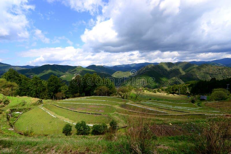 Lantbrukby längs Kumano Kodo, nära Tanabe på Wakayama, Japan arkivbild