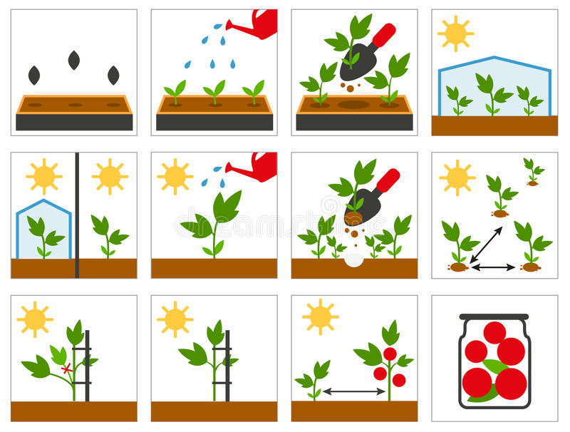 Lantbrukplanta Jordbruks- teknik vektor illustrationer
