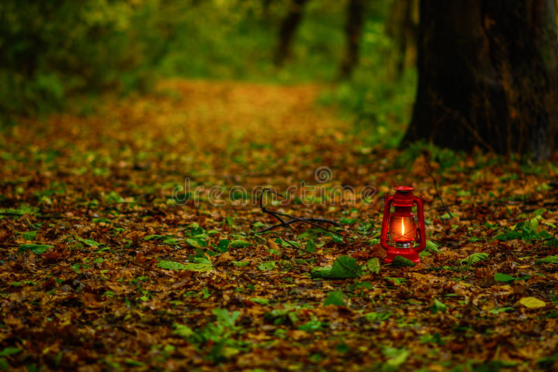 Lantern in the autumn leaves stock image
