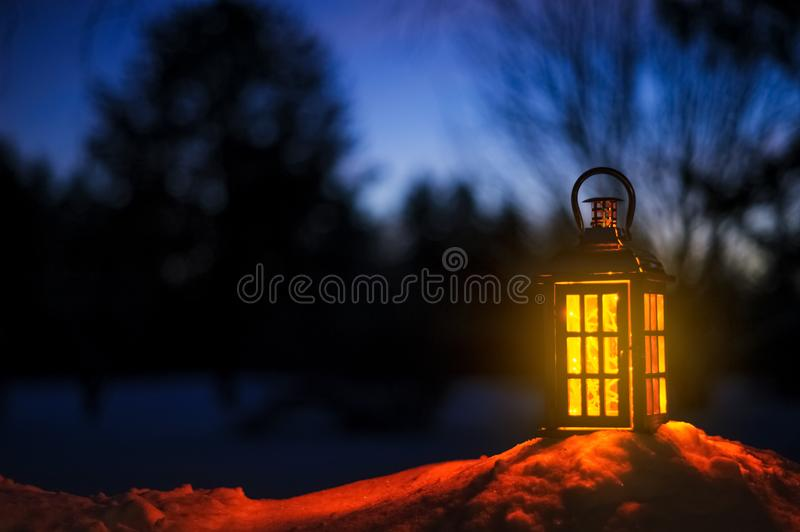 Lantern with Christmas lights in snow. Blurred forest in the background stock image