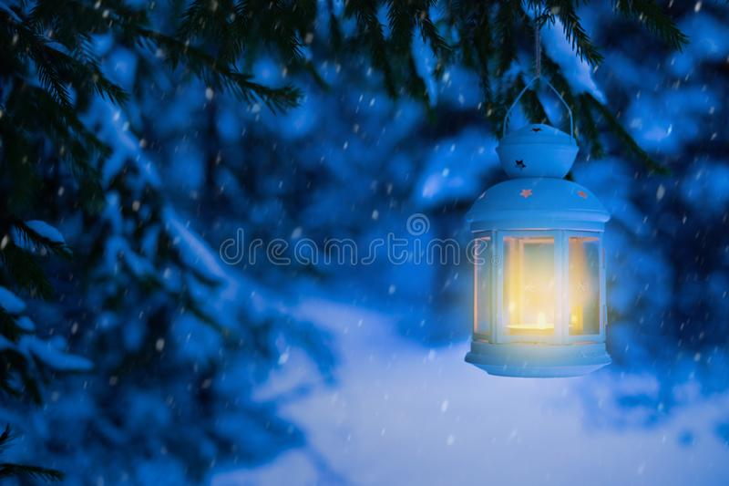 Lantern for Christmas in the woods under the tree. Lantern with stock photography