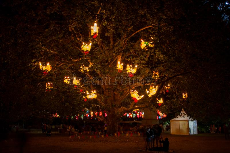Lantern tree. Pokemon pikachu lanterns on a tree in Auckland Lantern Festival, New Zealand