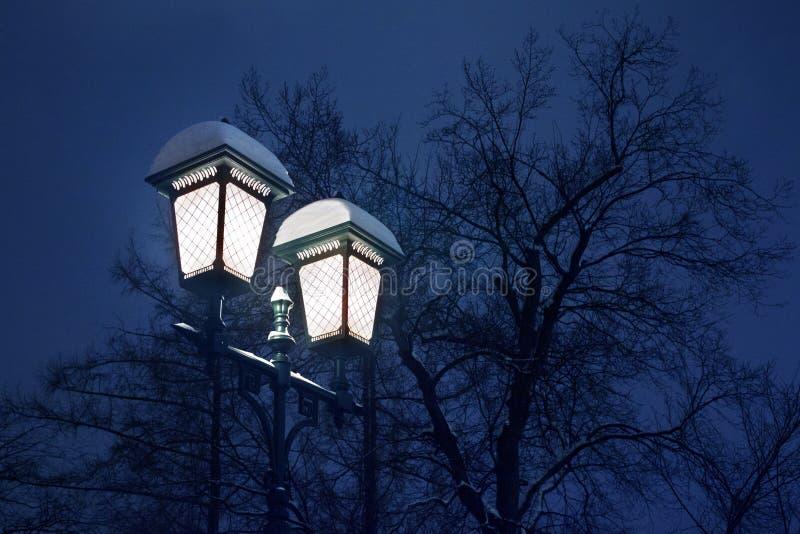 Lanterna coberto de neve ardente de incandescência na coluna do ferro em árvores pretas sem folha e noite azul ou nivelamento do  fotos de stock royalty free