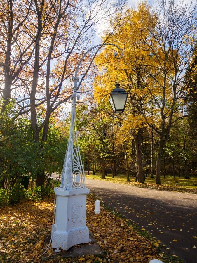 Lanterna decorativa no parque do outono imagens de stock