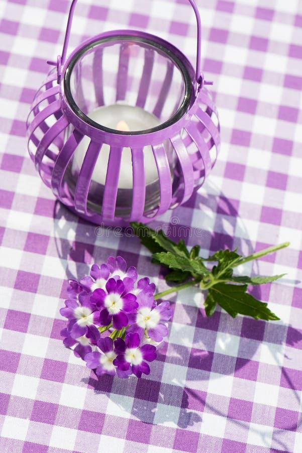 Lanterna del giardino con verbena fotografia stock libera da diritti