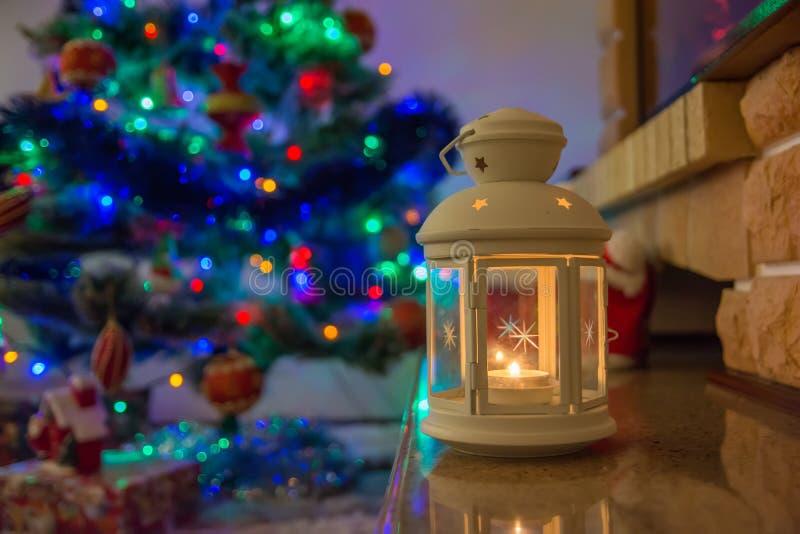 Lanterna di Natale sugli alberi del fondo fotografie stock