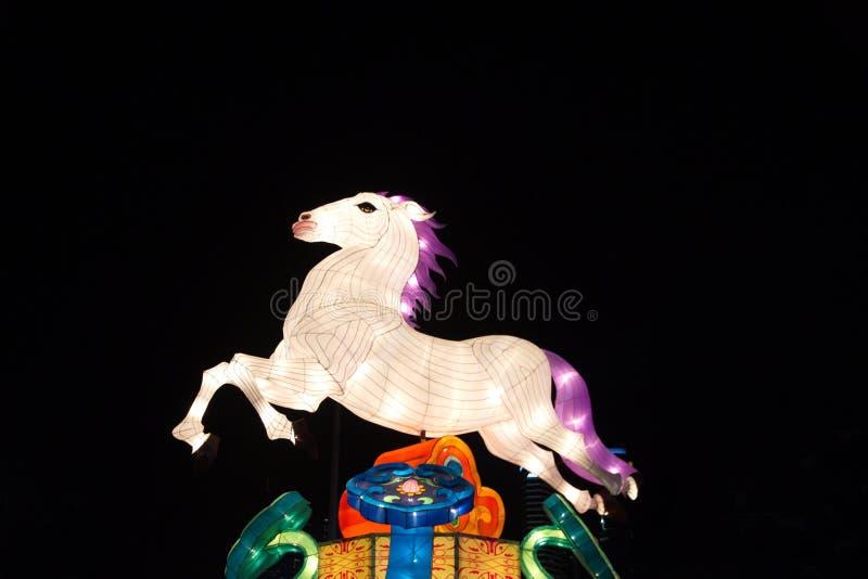 Lanterna do cavalo fotografia de stock royalty free