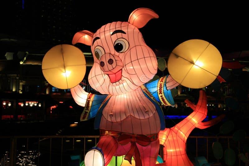 Lanterna do porco imagens de stock royalty free