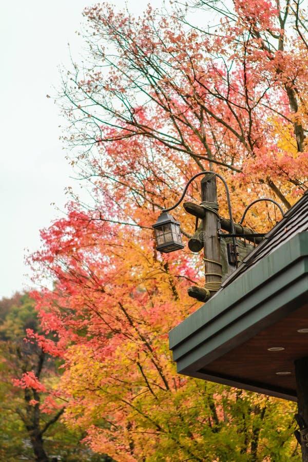 Lanterna e fondo variopinto di autunno fotografie stock libere da diritti
