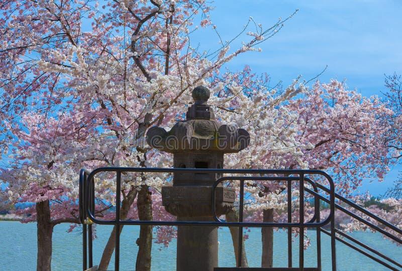 Lanterna japonesa imagens de stock royalty free