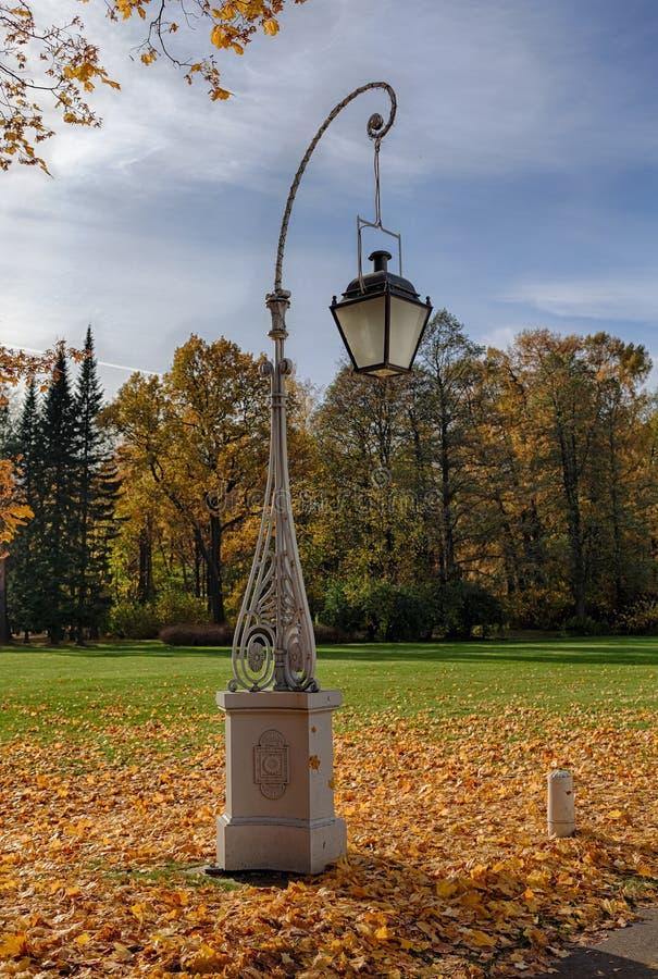 Lanterna no parque imagens de stock