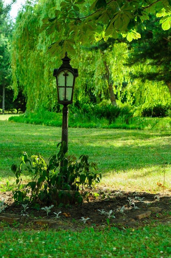 Lanterna no parque da cidade do canteiro de flores em público imagens de stock