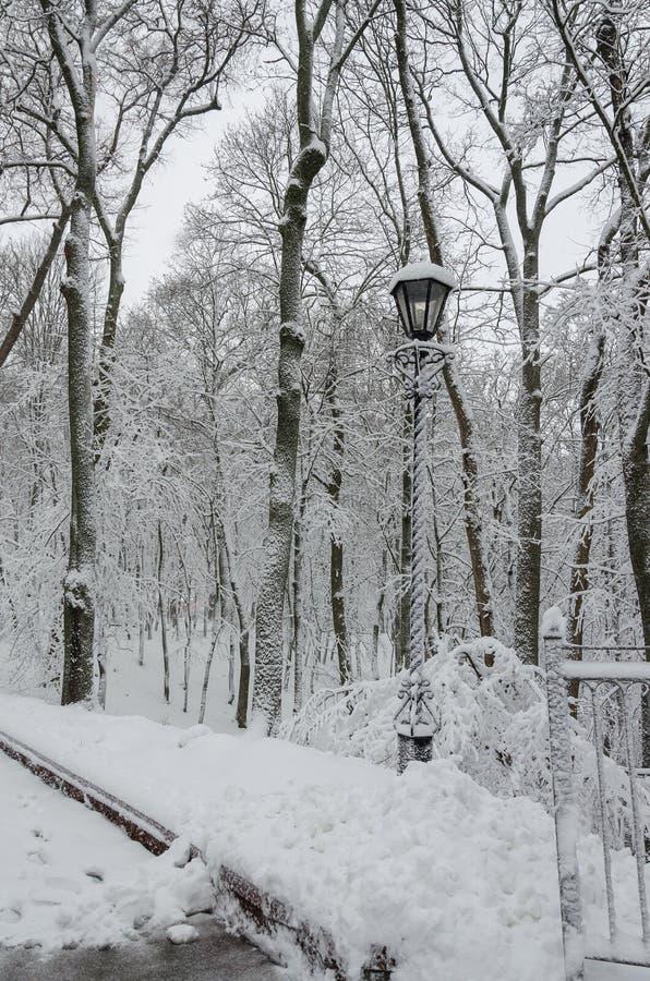 Lanterna no parque entre as árvores na neve fotos de stock