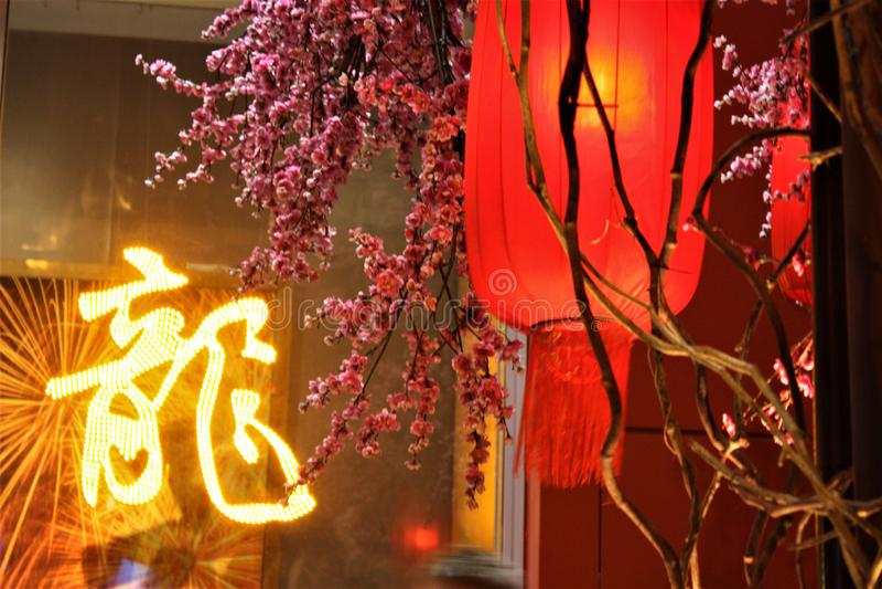 Lanterna vermelha chinesa do ano novo com a flor da ameixa no shopping imagem de stock