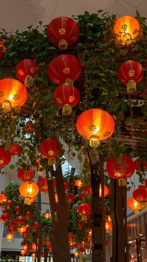 Lanternas chinesas que decoram árvores na terra traseira fotografia de stock royalty free