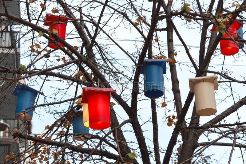 Lanternas coloridas que penduram na árvore foto de stock