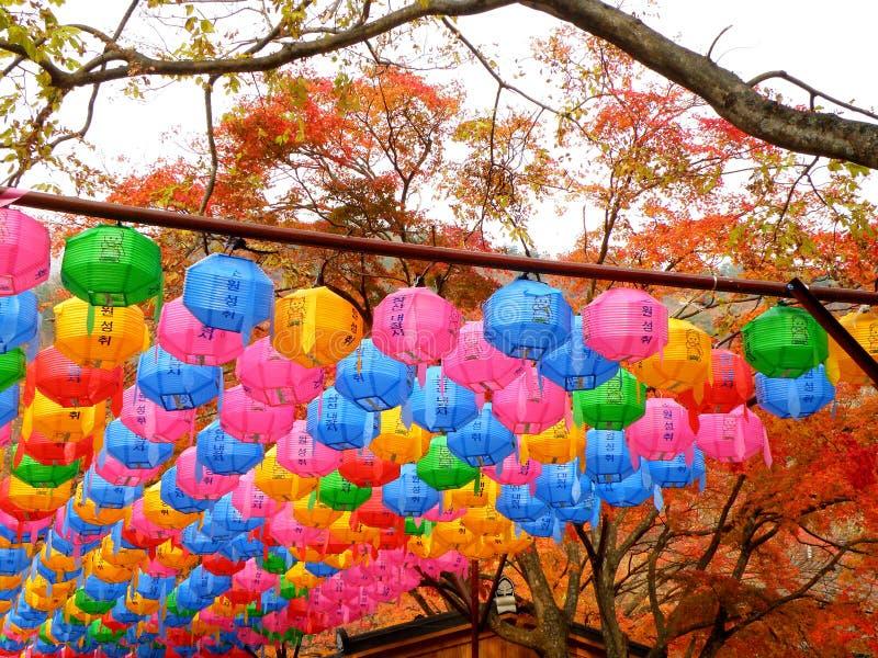 Lanternas de papel da multi cor sob a folhagem de outono em um templo velho imagem de stock