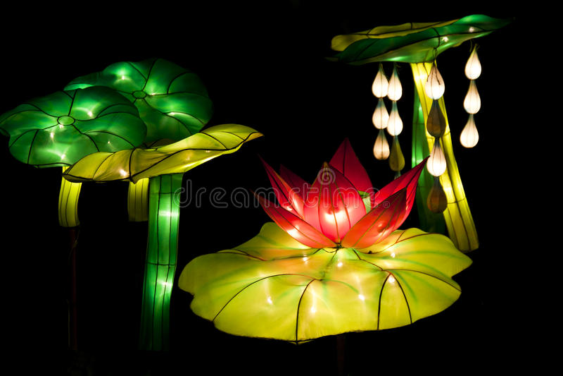 Lanternas dos lótus do festival imagem de stock royalty free
