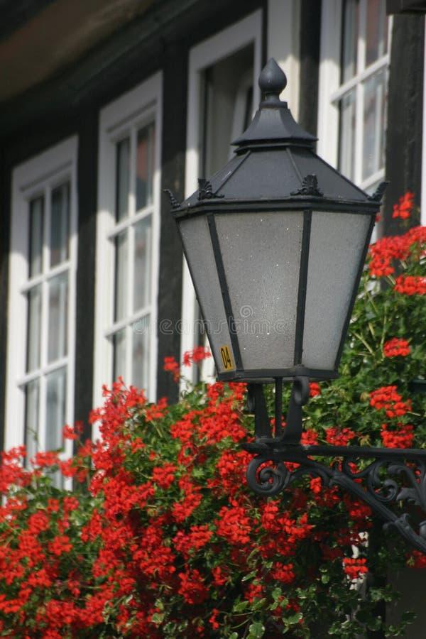 Lanterne avec des géraniums photographie stock libre de droits