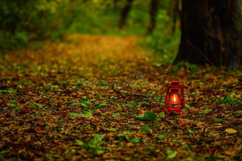 Lanterne dans les feuilles d'automne image stock