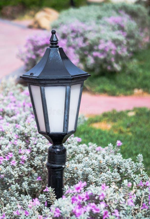 Lanterne marocaine de jardin image stock image du jardinage manicured 80074765 - Lanterne jardin ...