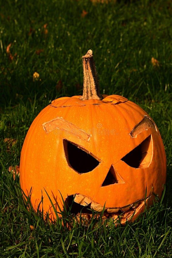Lanterne mauvaise de sourire de Halloween Jack o faite de gougé potiron avec de grandes dents découpées et nez triangulaire en so image libre de droits