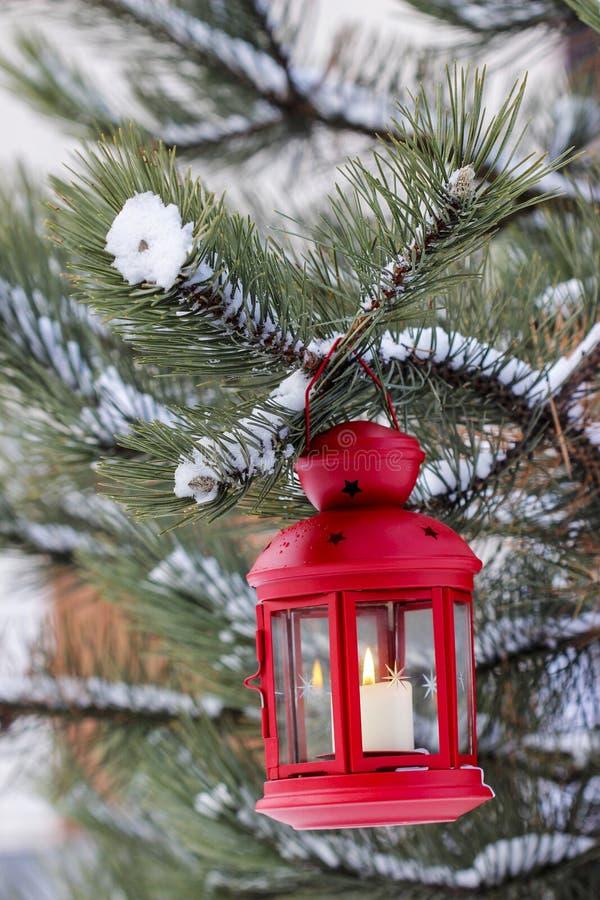 Lanterne rouge accrochant sur la branche de sapin images libres de droits
