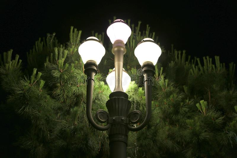 Lanternes la nuit au centre de la ville Nice, France photographie stock libre de droits