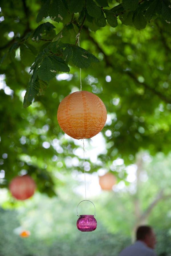 Lanternes oranges et roses et lumières pendant d'un arbre vert photo stock