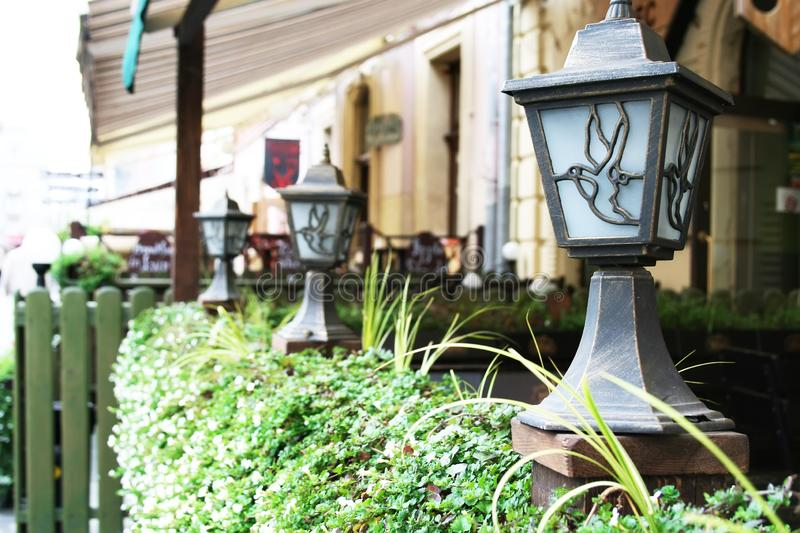 Lanterns decorated with flying birds, located on the green plant fence of a street cafe.  stock image
