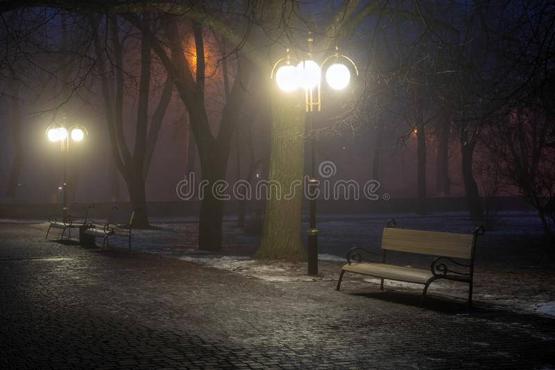 Lanterns trees and benches in the fog at night in the park. Late autumn night in the park. Wood benches and park alley.  royalty free stock image