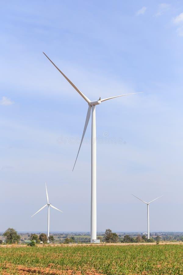 Lantgård för vindturbiner på kullen Utveckling av elektricitet, Thailand royaltyfria foton
