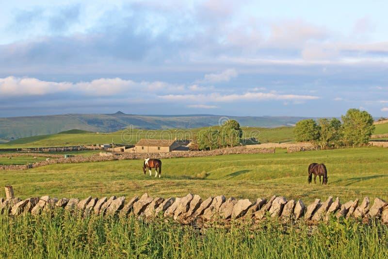 Lantgård i den maximala områdesnationalparken, Derbyshire royaltyfri fotografi