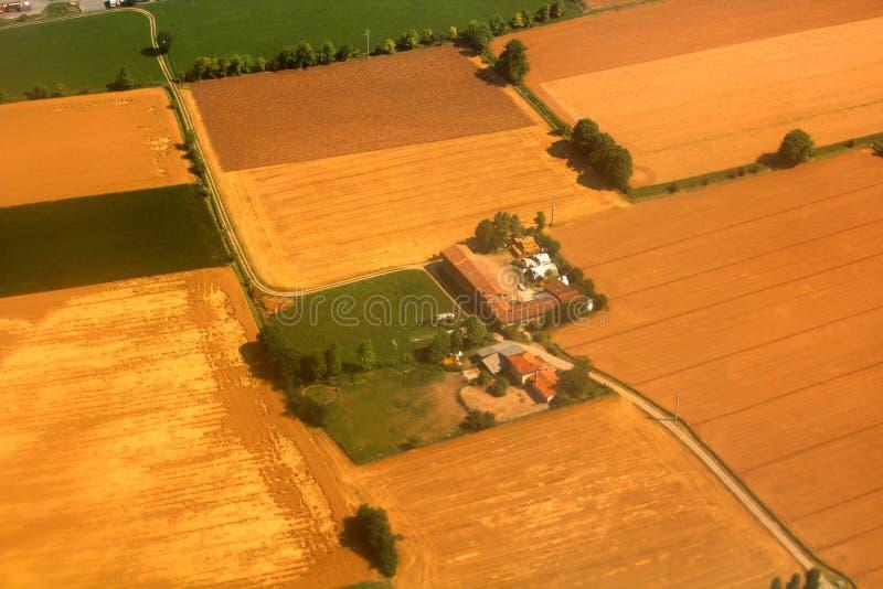 Lantgård i mitt av fält som planteras med majs som ses från nivån royaltyfria bilder