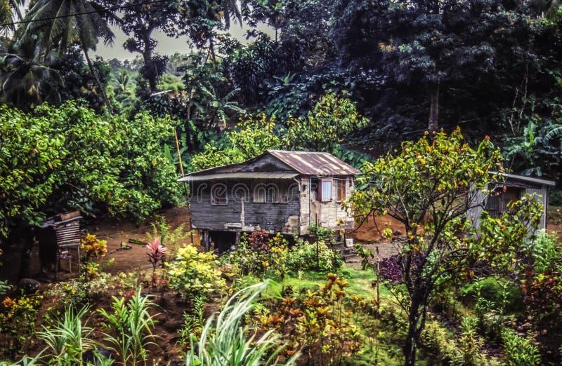 Lantgård på Dominica arkivbilder