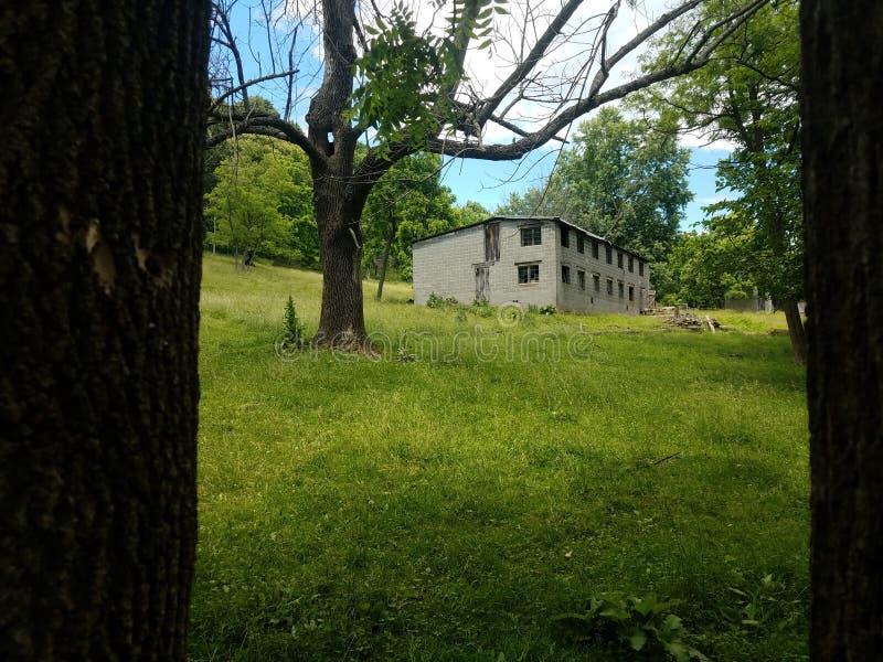 Lantgård som inramas av träd royaltyfri bild