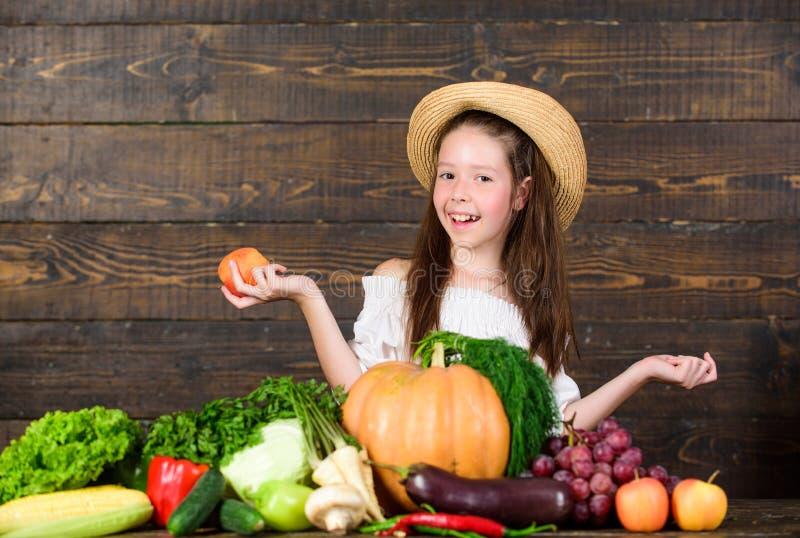 Lantgårdaktiviteter för ungar Traditionell lantgårdmarknad Barnet firar att skörda Marknad för flickaungelantgård med nedgångskör fotografering för bildbyråer