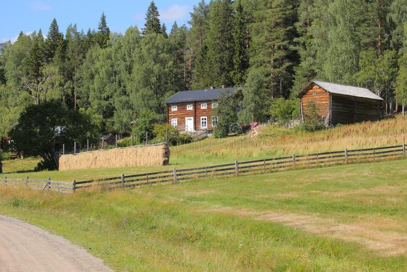 Lantgårdbyggnader en äng i kulturellt reservområde Gallejaur i Norrbotten, Sverige arkivfoton