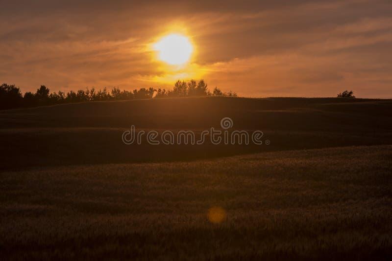 lantgårdfält över solnedgång royaltyfri fotografi