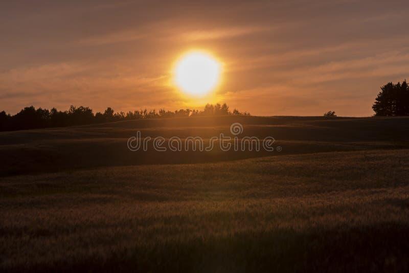 lantgårdfält över solnedgång arkivfoton